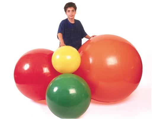 PhysioGymnic™ Inflatable Übungsbälle und Rollen